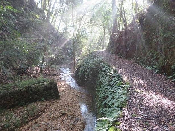 不動の滝に続く道