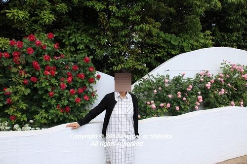 arabamoer-050140644.jpg