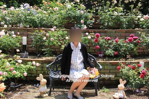 arabamoer-050140896.jpg