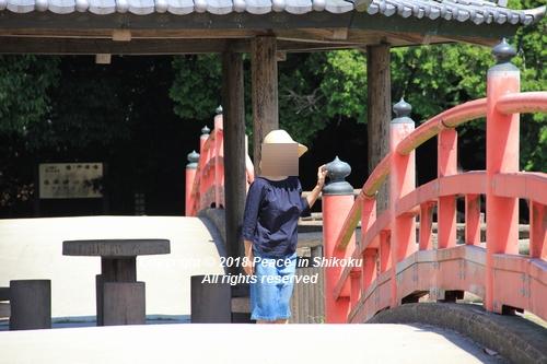 syoubu-06041283au.jpg