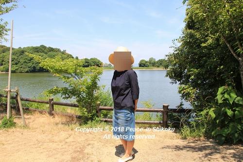 syoubu-06041304.jpg