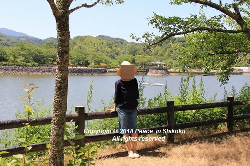 syoubu-06041309.jpg