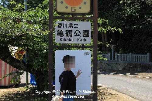 syoubu-06041337.jpg