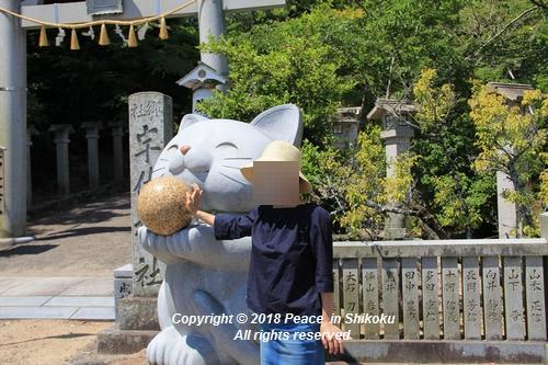 syoubu-06041339.jpg
