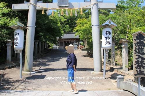 syoubu-06041342.jpg