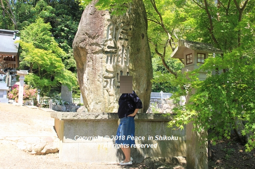 syoubu-06041344.jpg