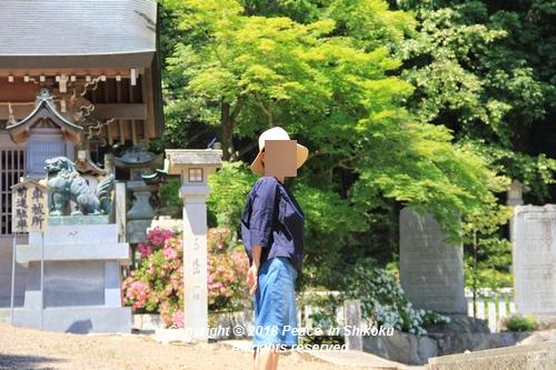 syoubu-06041347.jpg