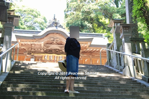 syoubu-06041376.jpg
