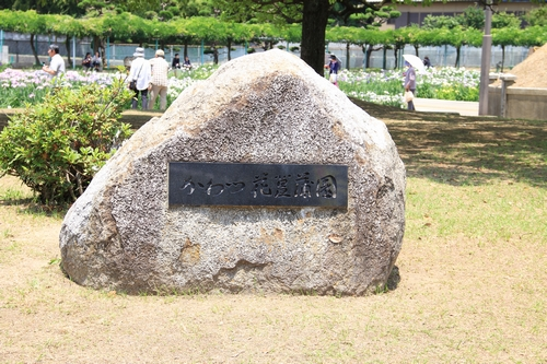 syoubu-06041420.jpg