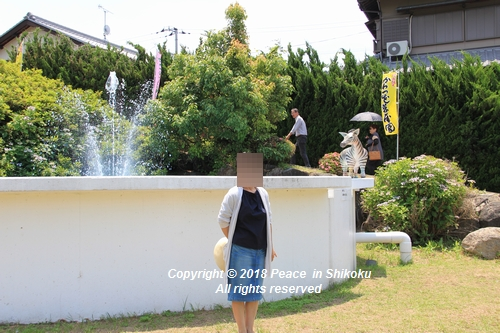 syoubu-06041424.jpg