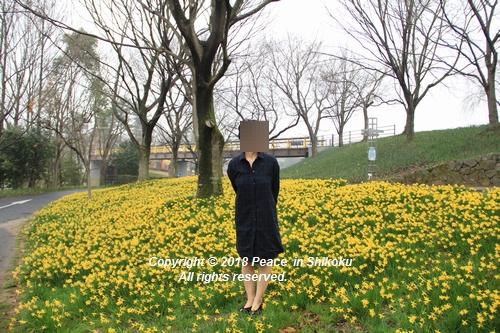 uonnamharu-03198481.jpg