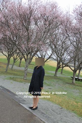 uonnamharu-03198578.jpg