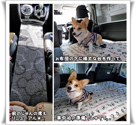 車中泊!?