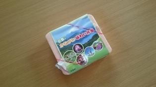 崎陽軒初夏のかながわ味わい弁当4