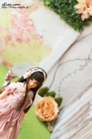 花の壁momoko