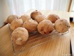 クルミプチパン