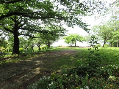 IMG_0343 西郷山公園