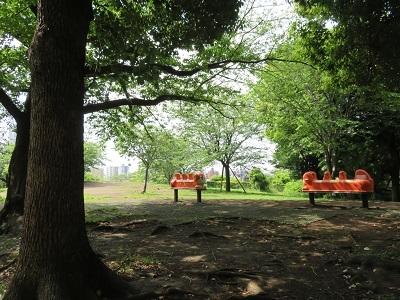 IMG_0344 西郷山公園