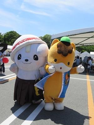 IMG_3004 ぐんまちゃん