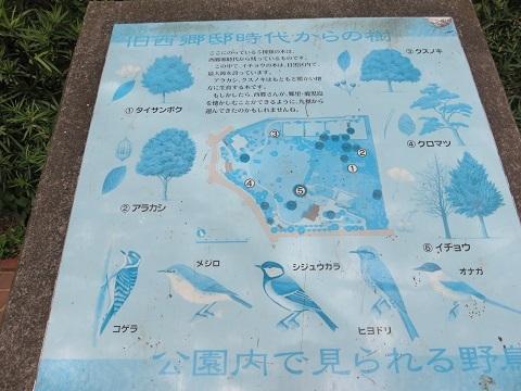 IMG_0363 菅刈公園