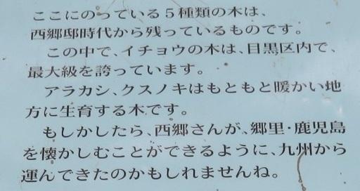 IMG_0363 菅刈公園2