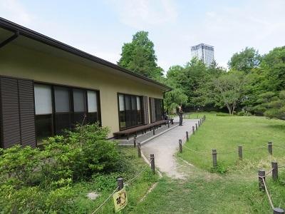 IMG_0379 菅刈公園