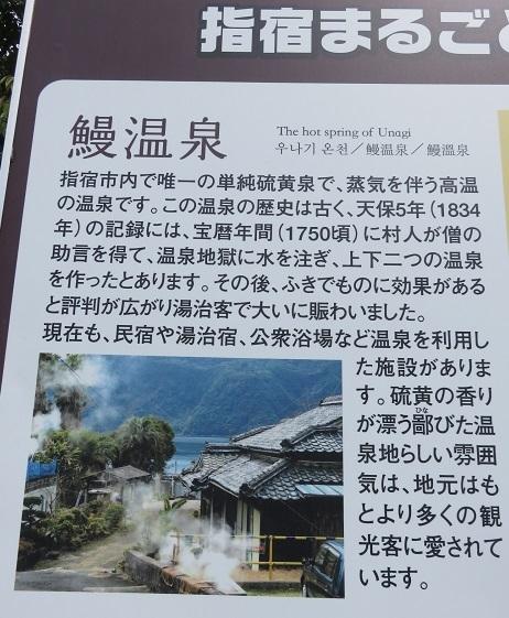 IMG_9207 鰻温泉