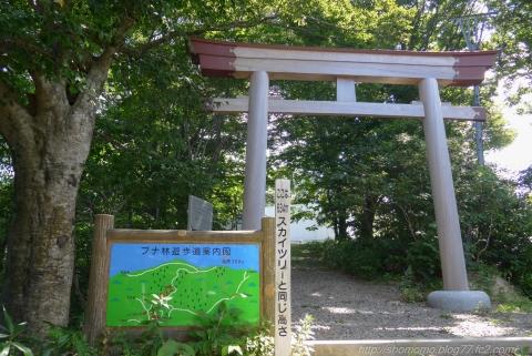 180731HOUDATSU_04.jpg