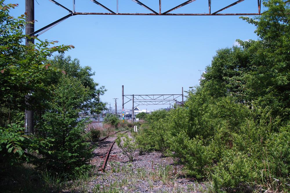 SD1M-1172.jpg