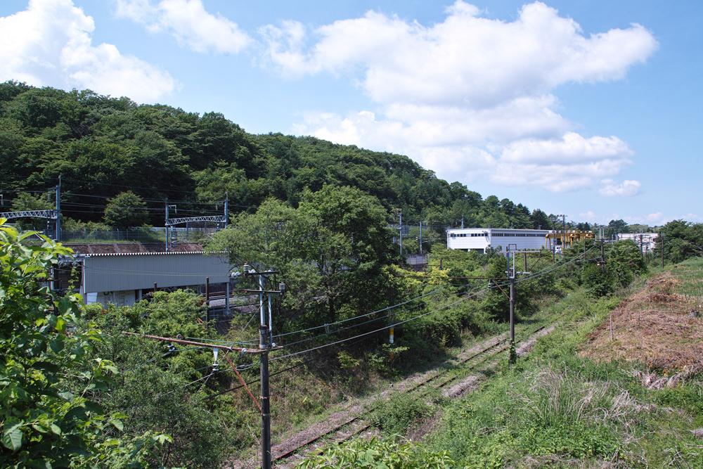 SD1M-1177.jpg