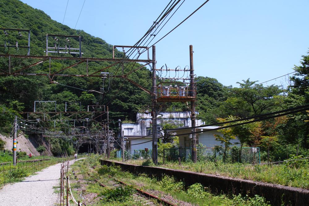 SD1M-1234.jpg