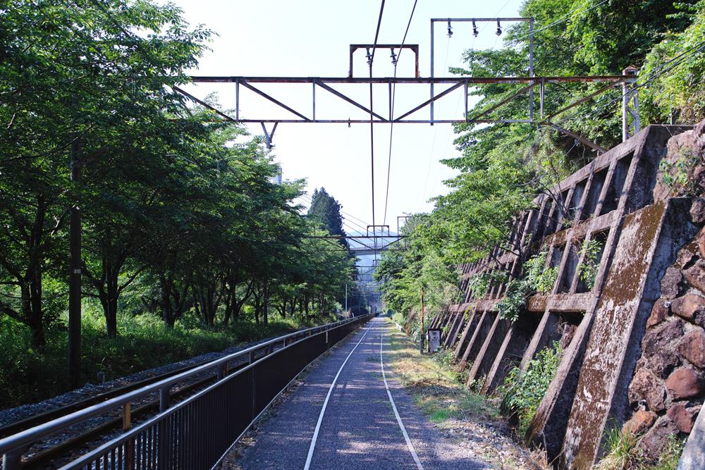 SD1M-1345.jpg