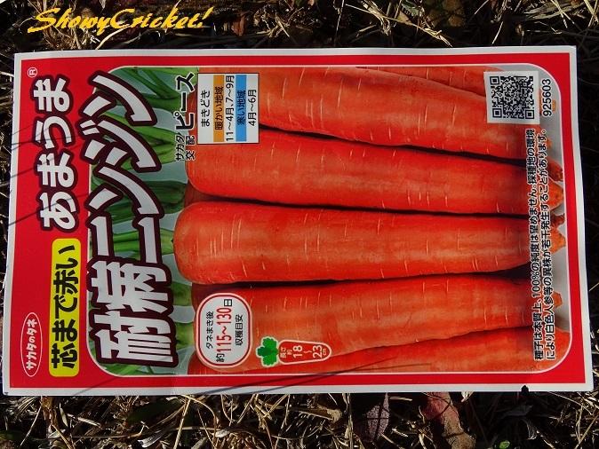 2018-02-04ニンジン (25)