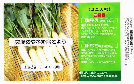 shrimp cafe_0942