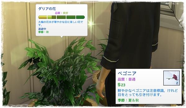 Sea_K6-15.jpg