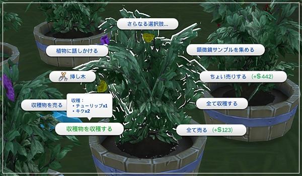 Sea_K8-1.jpg