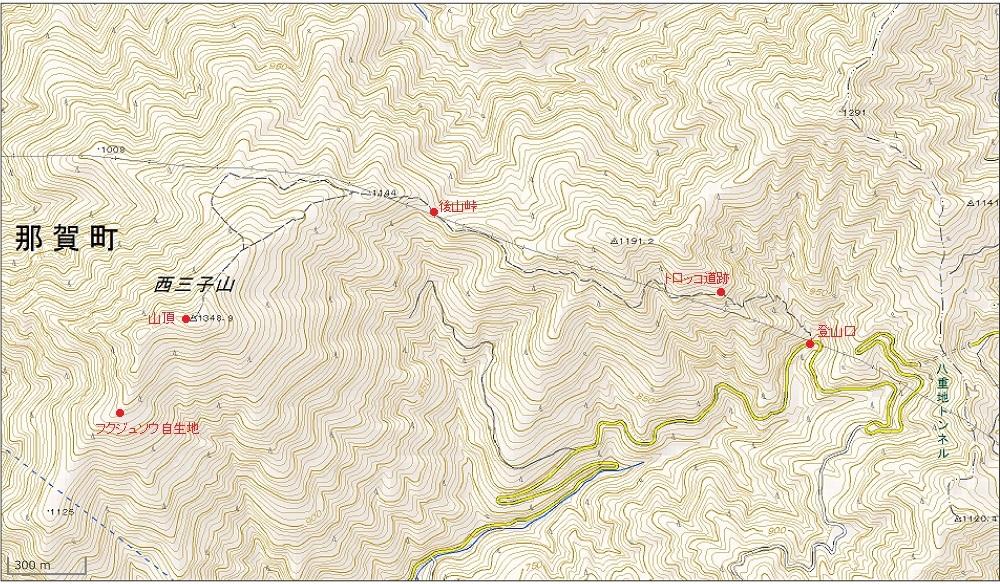 本日の登山コース