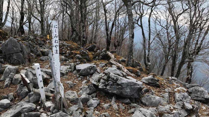 西三子山の山頂