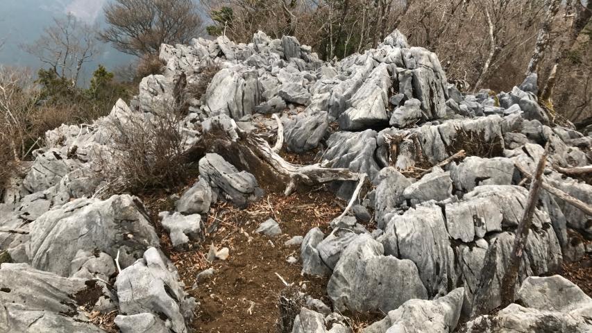 西三子山の石灰岩