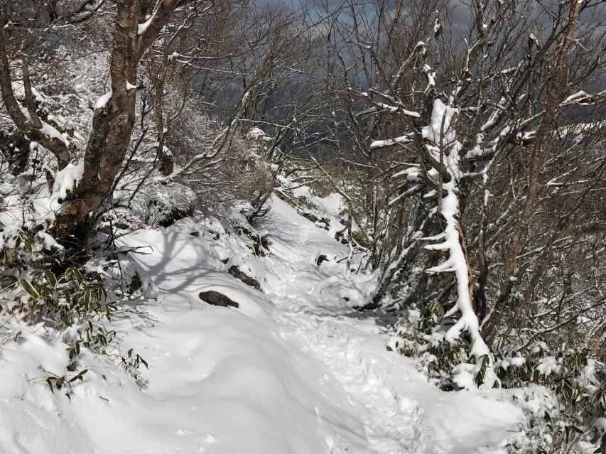 登山道で積雪10センチ程度か