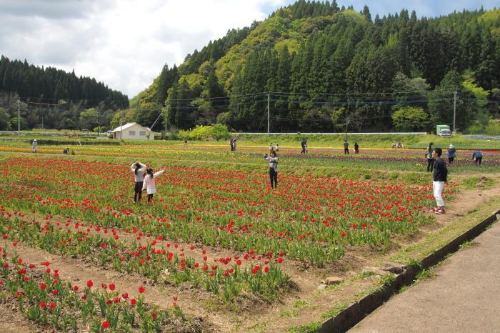 harajiri3.jpg