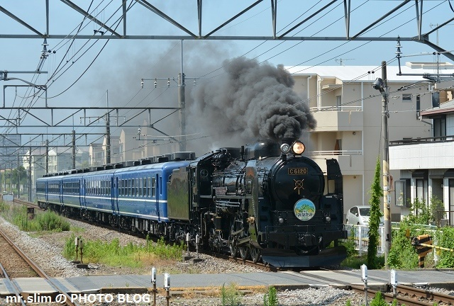 DSC_7270.jpg