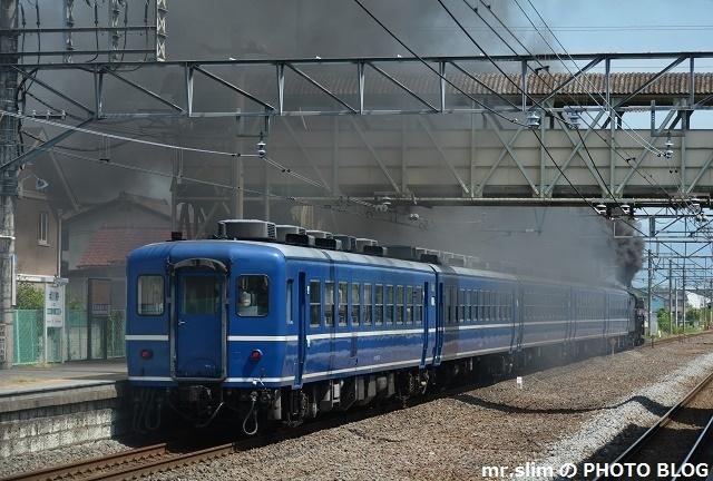DSC_7290.jpg