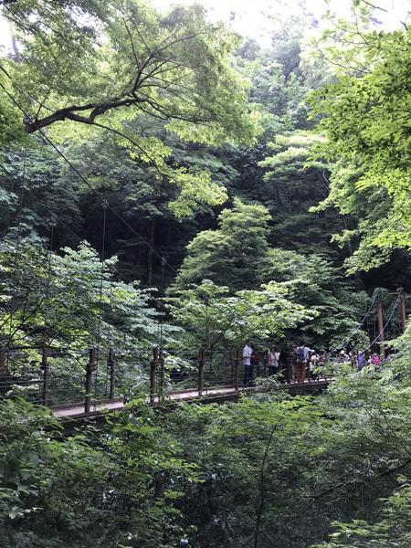 takao_20180526.jpg