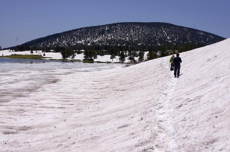 鎌沼の雪解け木道なし