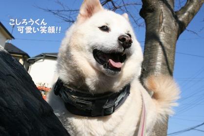 koshirou