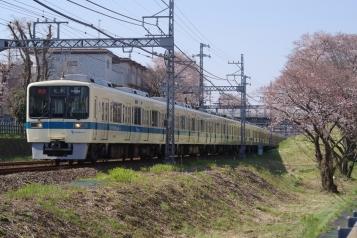 IMGP7038.jpg