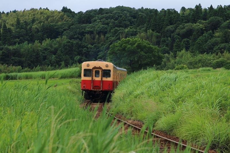 20180616小湊鉄道12-1a