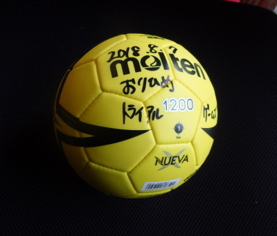 P8082714 ハンドボール
