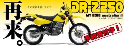 2018-DR-Z250_GY8.jpg